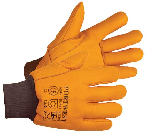 Antarctica Thinsulate Lined Coldstore Glove